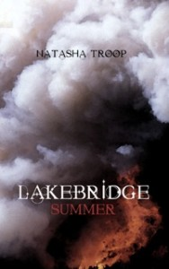 Book cover of Lakebridge: Summer