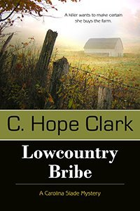 Book cover of Lowcountry Bribe